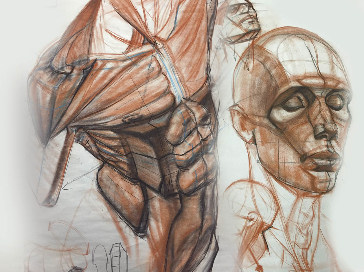 Beginning Figure Drawing with Charles Hu Spring 2017 Online Standard ...